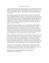 Argumentative Essay Samples For College Cover Letter Photo Essay Examples Examples Of Photo Essay Lessons