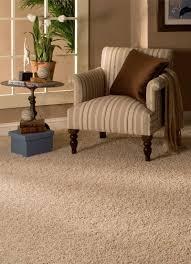 Carpet Living Room Living Room Design And Living Room Ideas - Family room carpet ideas