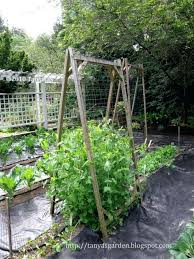 Fall Vegetable Garden Ideas Vegetable Garden Names Hydraz Club