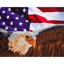 Bald Eagle On Flag Diamond Dotz Diamond Embroidery Facet Art Kit Bald Eagle And Flag