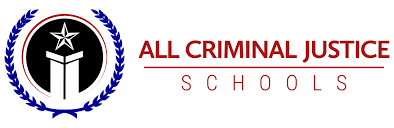 how to become a homicide detective education u0026 career