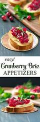 easy cranberry brie appetizers the seasoned mom