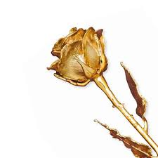 gold dipped roses arthurs collection yellow gold gemstone gold roses gold dipped