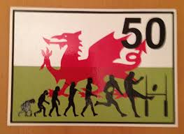 birthday card ideas for brother a 50th birthday card made for my welsh rugby loving brother in law