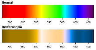 Color Blind Prank Enchroma Glasses And The Personal Side Of Color Perception The