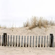 Delaware travel pro images Hasselblad 500c delaware 4 jpg jpg