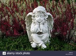 Angel Sculptures Angel Sculpture Statue Thinking Amid Autumn Heather Stock Photo