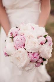 Peonies Bouquet The Flower Shed
