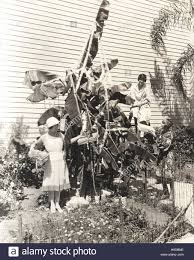 three women decorating banana tree for christmas stock photo