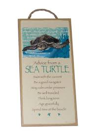 the 25 best turtle meaning ideas on pinterest