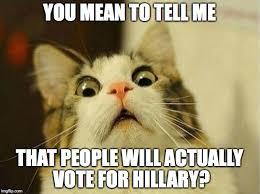 Mean Cat Memes - scared cat meme imgflip