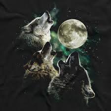 Three Wolf Moon Shirt Meme - close up ver three wolf moon know your meme