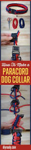 how to make a paracord dog collar easy diy crafts paracord and