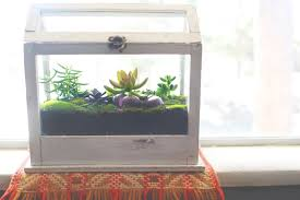 how to build your own terrarium u2014 nesting gypsy