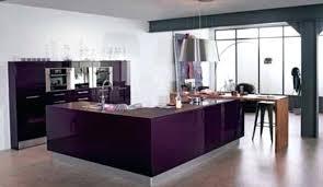 cuisine couleur aubergine meuble de cuisine aubergine cuisine aubergine meuble cuisine couleur