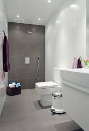 Small Bathroom Design Ideas Color Schemes Color Scheme Gray Shower Light Gray Floor White Fixtures