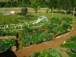 permaculture vegetable garden layout mixliveent com garden 30