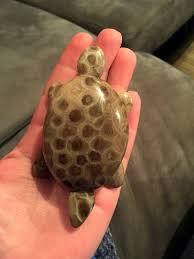 Polish Kitchen Petoskey Mini Petoskey Stone Turtle By Pstonecreations On Etsy Petoskey