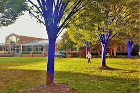 blue trees focus of saturday festival at bessie smith cultural center
