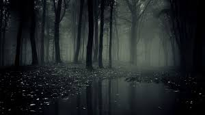 halloween black and white background path in a dark spooky forest with fog on halloween stock photo