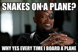 Snakes On A Plane Meme - snakes on a plane why yes every time i board a plane misc