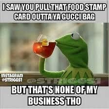Funny Frog Meme - kermit the frog memes google search makes me laugh pinterest