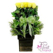 flowers delivery cheap birthday flowers delivery cheap hanoi
