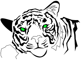 tiger drawings tiger designs tribal tiger