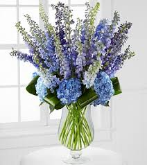 hydrangea bouquet honestly luxury delphinium hydrangea bouquet 31 stems vase