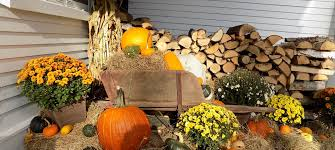 your guide to pumpkin and apple picking and halloween events near