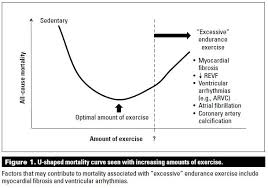 the impact of excessive endurance exercise on the heart bc