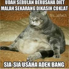 Meme Diet - kompilasi meme diet bikin ngakak ente tengok aja kalo gak percaya