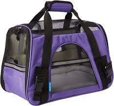 dog carriers free shipping at chewy com