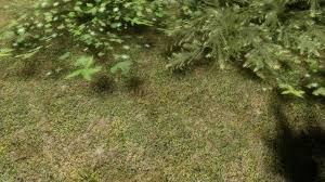 natural grass texture floor at skyrim nexus mods and community