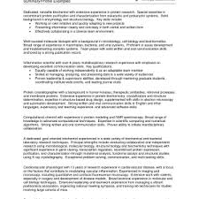 summary for resume examples statement powerful of qualifications