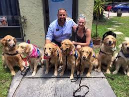 Comfort Pet Certification Comfort Dogs Provide Emotional Support After Orlando Shooting