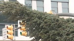state christmas tree arrives in columbia wltx com