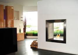 Bio Ethanol Fireplace Insert by Bioethanol Fireplace Insert Double Sided 650db Ecosmart Fire