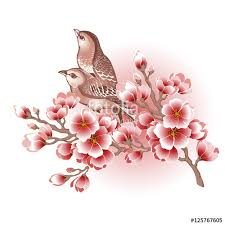 blooming tree branch and birds vector illustration stock