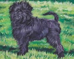 affenpinscher photos affenpinscher dog portrait art canvas print of lashepard painting