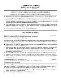 exle of resumes for it resumes exles it director resume exle sle resumes for