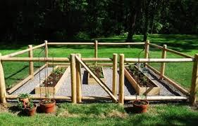 vegetable garden fence gate home design ideas