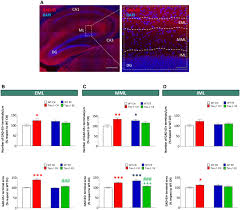 novel function of tau in regulating the effects of external download figure