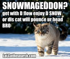 Lolcat Meme - snowmageddon2015 lolcat meme lol cat research