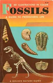 m iterran si e social fossils a guide to prehistoric a golden nature guide by