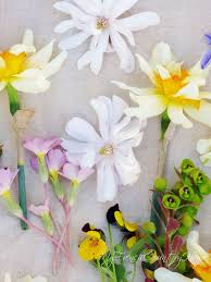 easter flowers from my garden my french country home