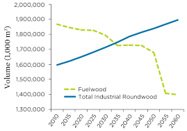 planting for the future how demand for wood products could be