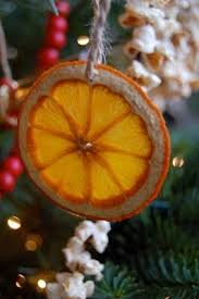 98 best dried orange slices decoration images on dried