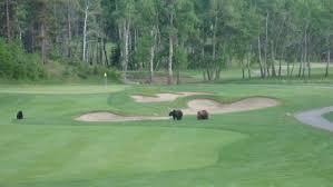 natural hazards on canada u0027s 1 golf resort jasper park lodge