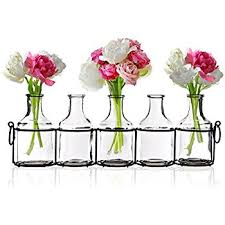 Decorate Flower Vase Amazon Com Chive U2013 Caterpillar Small Clear Glass Bud Vase For